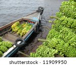 Delivery Bananas  Musa   By...