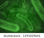 bacteria biological concept.... | Shutterstock .eps vector #1191029641