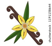 vanilla flower with stitch and...   Shutterstock .eps vector #1191158644
