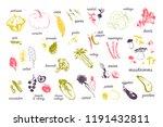 vector hand drawn illustration... | Shutterstock .eps vector #1191432811