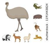 different animals cartoon icons ... | Shutterstock . vector #1191443824