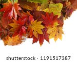 autumn leaves background | Shutterstock . vector #1191517387