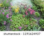 garden close to block building | Shutterstock . vector #1191624937