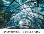 structural glass facade curving ... | Shutterstock . vector #1191667357