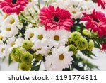 Pink Gerbera White Daisy And...