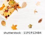 autumn composition. beautiful... | Shutterstock . vector #1191912484