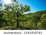 colorful autumn hilly landscape ... | Shutterstock . vector #1191920761