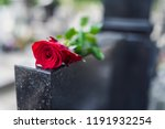 Gravestone With Withered Rose....
