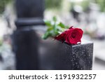 rose on tombstone. red rose on... | Shutterstock . vector #1191932257