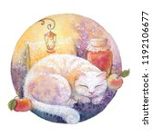 White Cat Sleeping On A Pillow  ...
