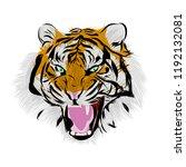 tiger face  illustration  | Shutterstock .eps vector #1192132081