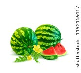 fresh  nutritious and tasty... | Shutterstock .eps vector #1192156417