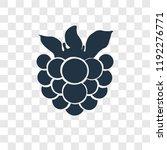 raspberry vector icon isolated...   Shutterstock .eps vector #1192276771