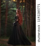 a beautiful gothic princess... | Shutterstock . vector #1192285771