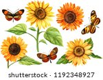 watercolor set ofsunflowers and ... | Shutterstock . vector #1192348927