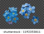 blue forget me not spring... | Shutterstock .eps vector #1192353811