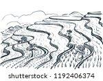 rice terrace fields landscape ... | Shutterstock .eps vector #1192406374