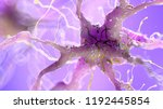 3d rendered medically accurate... | Shutterstock . vector #1192445854