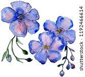 watercolor blue flax flowers.... | Shutterstock . vector #1192466614