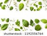 green fresh aromatic herbs... | Shutterstock . vector #1192556764