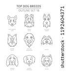 top dog breeds. pet outline... | Shutterstock .eps vector #1192604371