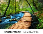 deep forest stream. crystal... | Shutterstock . vector #119260441