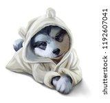 A Husky Puppy In A Bathrobe....
