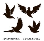 collection of black dove... | Shutterstock .eps vector #1192652467