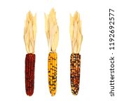 Three assorted autumn dried...