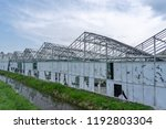 Greenhouses With Broken Glass...