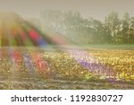 sunrays with chromatic... | Shutterstock . vector #1192830727