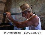 grape harvest  portrait of old... | Shutterstock . vector #1192838794