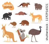 australian animals vector... | Shutterstock .eps vector #1192916521
