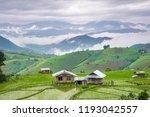rice terrace in rural thailand. | Shutterstock . vector #1193042557