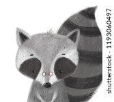 cute raccoon illustration.... | Shutterstock . vector #1193060497