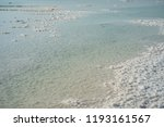 salty shore of dead sea  israel ... | Shutterstock . vector #1193161567