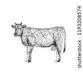 cow. cattle. isolated black... | Shutterstock .eps vector #1193208574