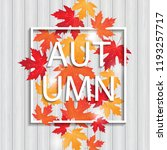 frame with colored autumn... | Shutterstock . vector #1193257717
