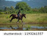horse and jockey outdoor  | Shutterstock . vector #1193261557
