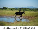 horse and jockey outdoor  | Shutterstock . vector #1193261584