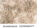 sheep fur. natural sheepskin... | Shutterstock . vector #1193440477