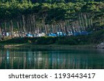 natural campground  with... | Shutterstock . vector #1193443417