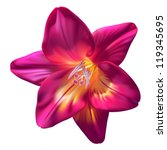 vector realistic purple freesia ... | Shutterstock .eps vector #119345695