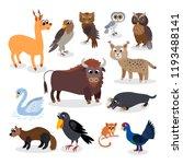 wild europe animals set in flat ... | Shutterstock .eps vector #1193488141