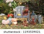 autumn scene with plants ... | Shutterstock . vector #1193539021