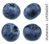 blueberry isolated on white... | Shutterstock . vector #1193560267