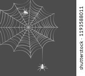 collection of cobweb  isolated... | Shutterstock .eps vector #1193588011