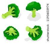 broccoli icon set. isometric... | Shutterstock .eps vector #1193603974