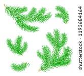 fir branches.  set of christmas ... | Shutterstock .eps vector #1193684164