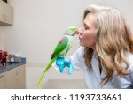 friendly female veterinarian... | Shutterstock . vector #1193733661